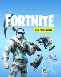Fortnite Deep Freeze Bundle PS4 KOD KLUCZ
